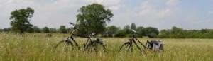 cropped-fietsen-drenthe.jpg